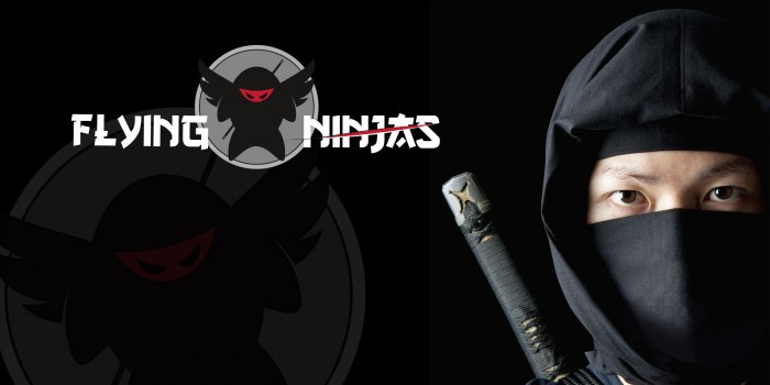 Flying Ninjas Logodesign